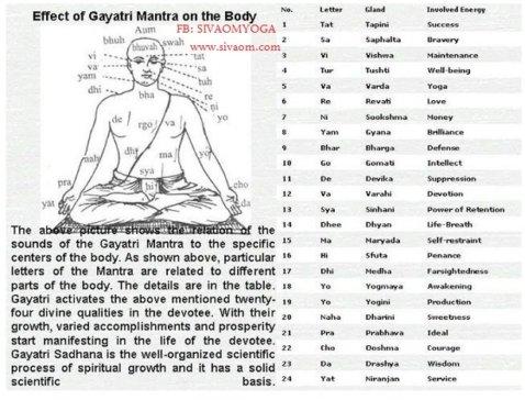 gayatri mantra sivaom