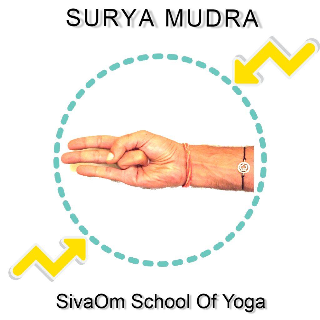 surya mudra sivaom yoga